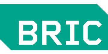 BRIC Arts   Media   Bklyn